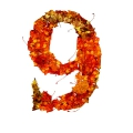 number 9 initial red color leaves ultra realistic