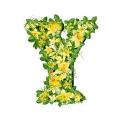 letter initial Y spring colorful blooming with vivid green leaves yellow flowers ultra realistic